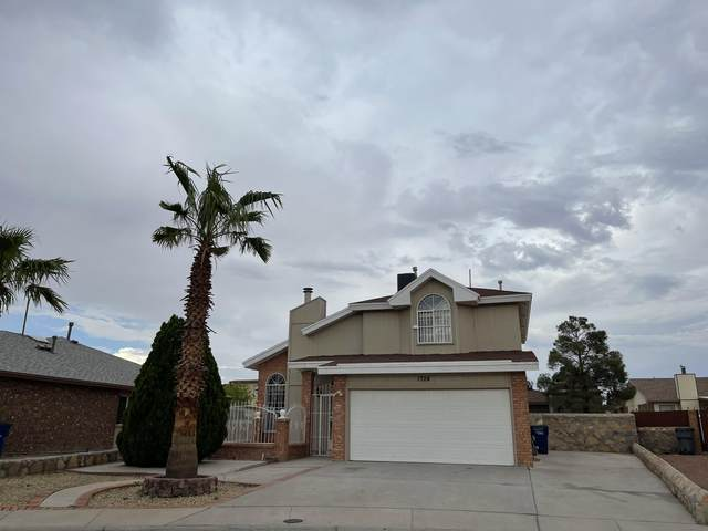 1724 Anna Marie Court, El Paso, TX 79928 (MLS #849328) :: Red Yucca Group
