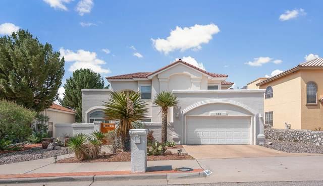 529 Moondale Drive, El Paso, TX 79912 (MLS #849348) :: The Purple House Real Estate Group