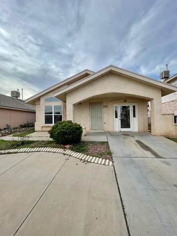 12105 Tower Hill Drive, El Paso, TX 79936 (MLS #849358) :: The Purple House Real Estate Group