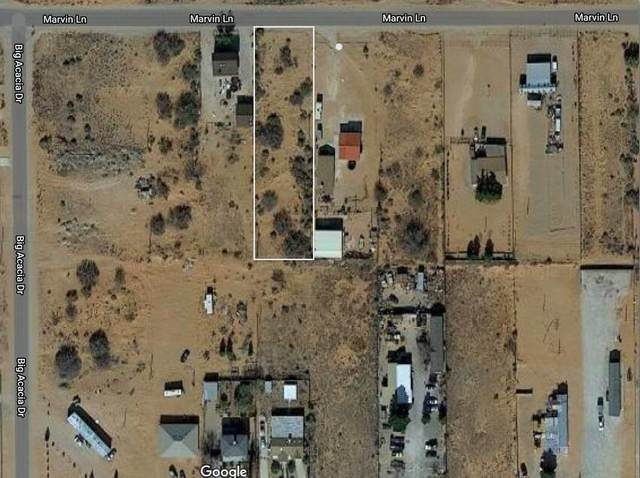 15130 Marvin Ln Lane, El Paso, TX 79938 (MLS #849392) :: The Purple House Real Estate Group
