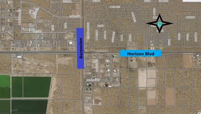0 Bruno Drive, Horizon City, TX 79928 (MLS #849409) :: The Purple House Real Estate Group
