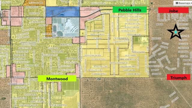0 Greenvine Drive, El Paso, TX 79938 (MLS #849413) :: Red Yucca Group