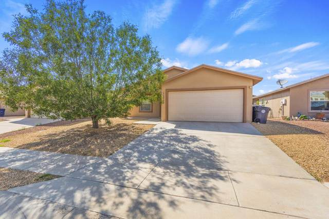 11713 Autumn Wheat Drive, El Paso, TX 79934 (MLS #849441) :: Red Yucca Group
