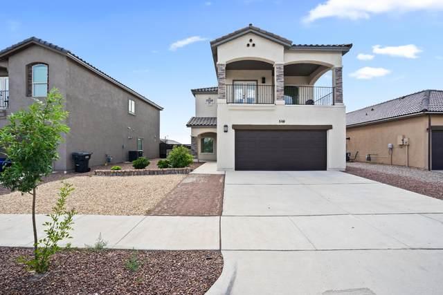 569 Lanner Street, Horizon City, TX 79928 (MLS #849469) :: The Purple House Real Estate Group