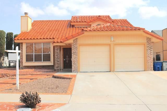 11701 Bunky Henry Lane, El Paso, TX 79936 (MLS #849480) :: Red Yucca Group