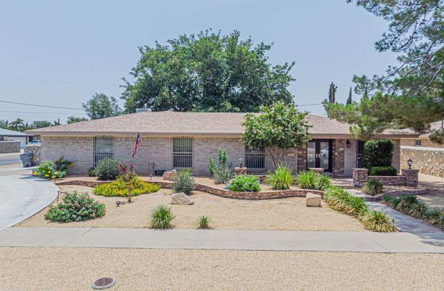 8912 Mcfall Drive, El Paso, TX 79925 (MLS #849528) :: The Purple House Real Estate Group