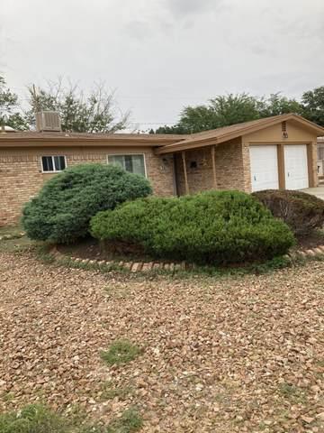 3011 Wedgewood Drive, El Paso, TX 79925 (MLS #849534) :: Preferred Closing Specialists