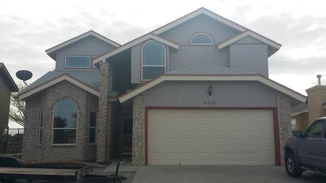 4516 Loma Linda, El Paso, TX 79934 (MLS #849553) :: Red Yucca Group