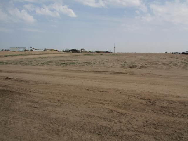 TBD Pellicano Drive, El Paso, TX 79928 (MLS #849567) :: Red Yucca Group