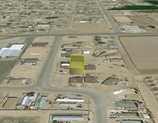 312 Hacienda Escondida, San Elizario, TX 79849 (MLS #849596) :: Red Yucca Group