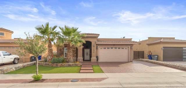 14024 Sandy Point Lane, El Paso, TX 79938 (MLS #849619) :: The Purple House Real Estate Group