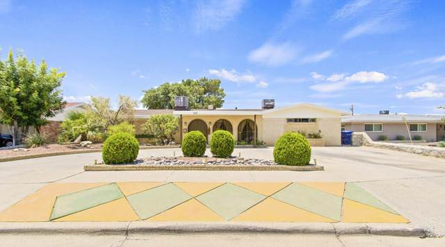 259 Crown Point Drive, El Paso, TX 79912 (MLS #849631) :: The Purple House Real Estate Group