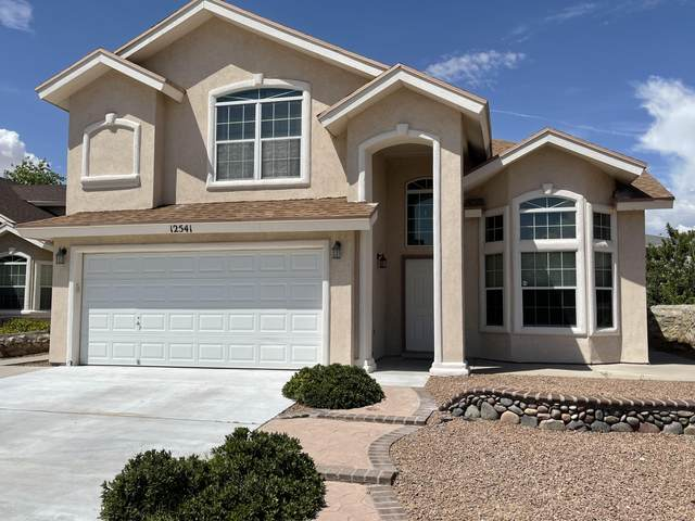 12541 Western Gull Drive, El Paso, TX 79928 (MLS #849672) :: The Purple House Real Estate Group