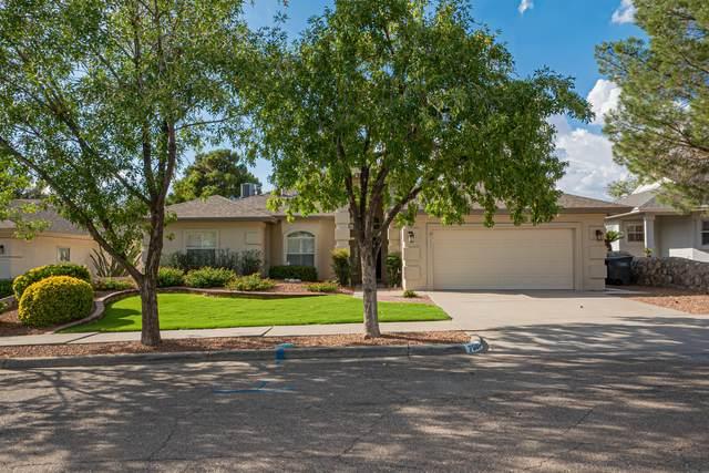 7001 Rock Canyon Drive, El Paso, TX 79912 (MLS #849681) :: The Purple House Real Estate Group
