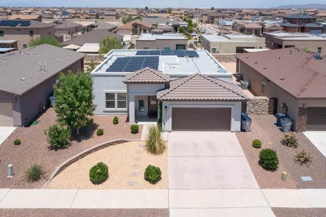 14517 Long Shadow Avenue, El Paso, TX 79938 (MLS #849735) :: The Purple House Real Estate Group