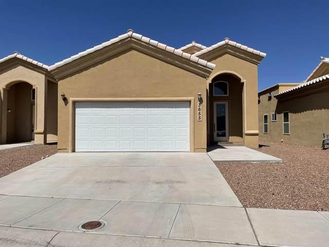 3655 Grand Bahamas Drive, El Paso, TX 79936 (MLS #849755) :: Red Yucca Group