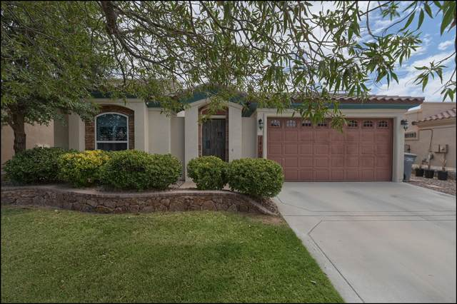 14108 Rainbow Point Drive, El Paso, TX 79938 (MLS #849769) :: The Purple House Real Estate Group