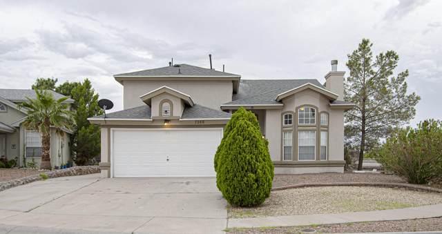 7288 Luz De Paseo Court, El Paso, TX 79912 (MLS #849770) :: The Purple House Real Estate Group