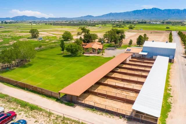 8267 Bosque Road, Canutillo, TX 79835 (MLS #849776) :: The Purple House Real Estate Group