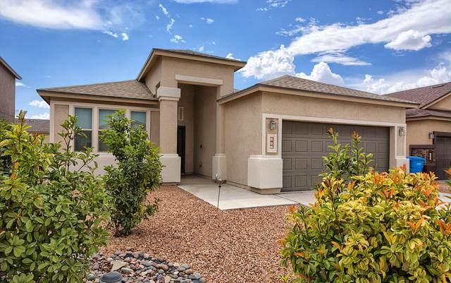 131 N Manzanita Drive, El Paso, TX 79928 (MLS #849782) :: The Matt Rice Group