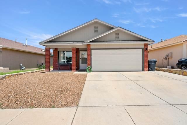 12241 Via Campo Drive, El Paso, TX 79936 (MLS #849793) :: Red Yucca Group