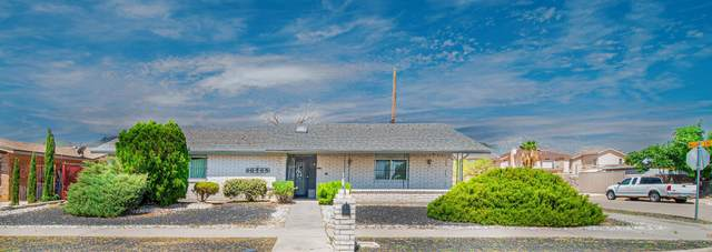 10765 Fort Worth Street, El Paso, TX 79924 (MLS #849806) :: Red Yucca Group
