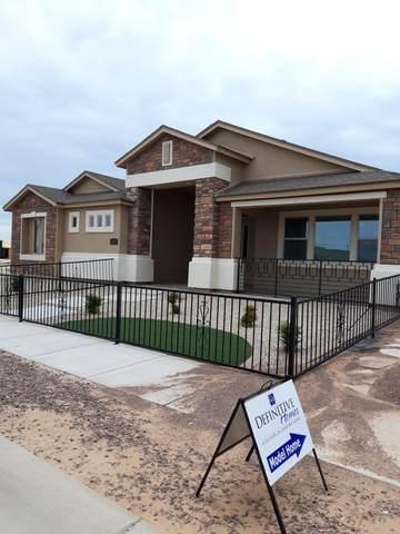 2721 Mike Price Drive, El Paso, TX 79938 (MLS #849851) :: The Matt Rice Group
