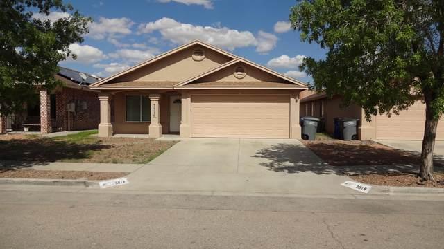 3516 Al Roberts Drive, El Paso, TX 79936 (MLS #849863) :: The Matt Rice Group