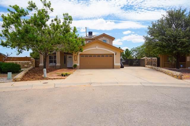 14320 Desert Crest Way, Horizon City, TX 79928 (MLS #849894) :: The Matt Rice Group