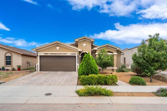 14229 Trigger Rock Lane, El Paso, TX 79938 (MLS #849909) :: Mario Ayala Real Estate Group