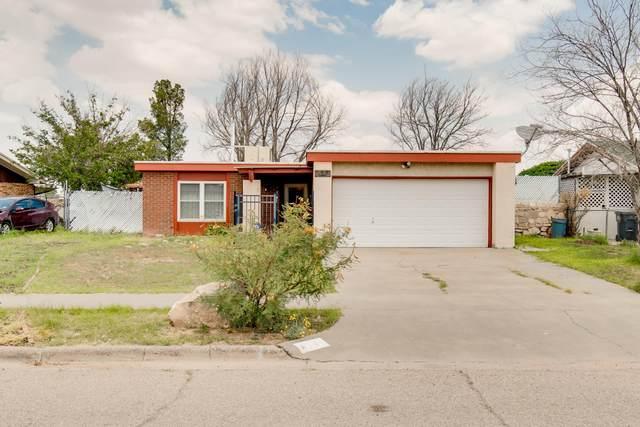 1510 Opossum Circle, Horizon City, TX 79928 (MLS #849936) :: Jackie Stevens Real Estate Group