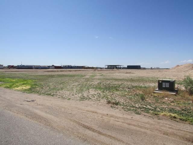 14600 Quarter Horse Street, Clint, TX 79836 (MLS #849937) :: The Purple House Real Estate Group