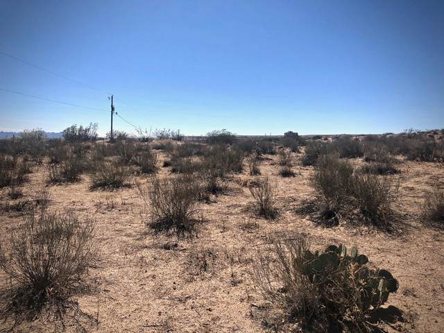 Tract B Tierra Vista, Anthony, NM 88021 (MLS #849989) :: Jackie Stevens Real Estate Group