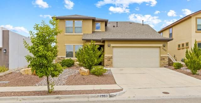 7393 Autumn Sage Drive, El Paso, TX 79911 (MLS #850004) :: Preferred Closing Specialists