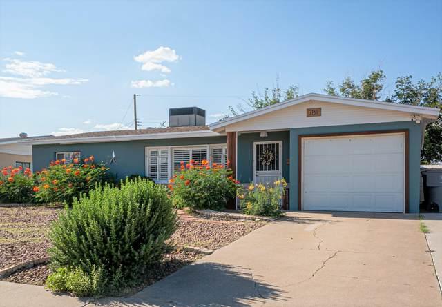 7811 Cielo Vista Drive, El Paso, TX 79925 (MLS #850034) :: The Matt Rice Group