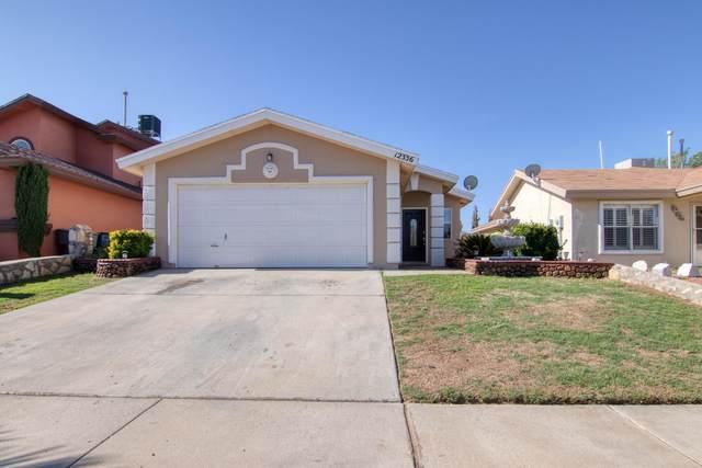 12336 Bob Heasley Drive, El Paso, TX 79938 (MLS #850059) :: Red Yucca Group