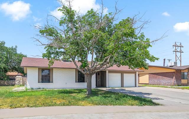2617 Aquatic Lane, El Paso, TX 79936 (MLS #850081) :: Mario Ayala Real Estate Group