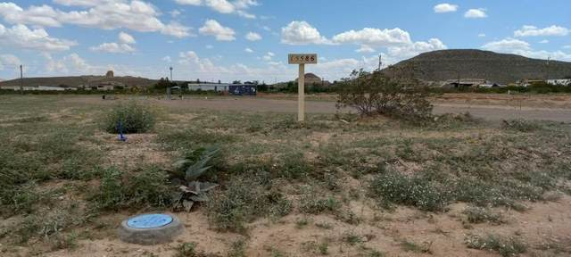 15586 Sundrop Drive, El Paso, TX 79938 (MLS #850127) :: The Purple House Real Estate Group
