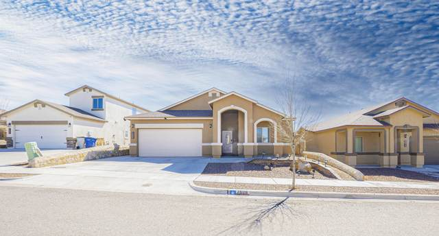 7508 Wolf Creek Drive, El Paso, TX 79911 (MLS #850171) :: Red Yucca Group