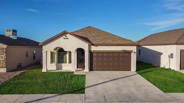 961 Haggerston Avenue, El Paso, TX 79928 (MLS #850196) :: Mario Ayala Real Estate Group