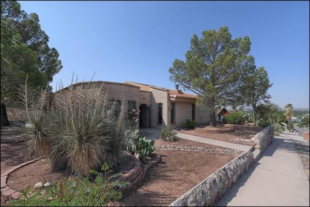 256 Alvarez Drive, El Paso, TX 79932 (MLS #850297) :: Red Yucca Group
