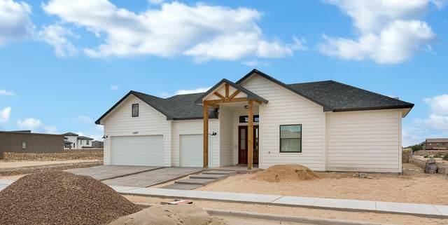 787 Lanner Street, El Paso, TX 79928 (MLS #850394) :: The Purple House Real Estate Group