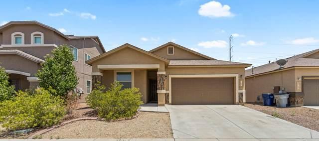 3264 David Palacio Drive, El Paso, TX 79938 (MLS #850440) :: Summus Realty