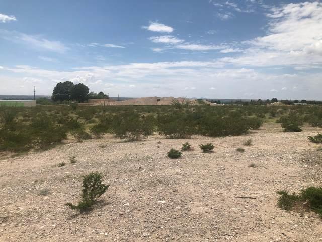 7111 S S Desert Blvd Boulevard, Canutillo, TX 79835 (MLS #850452) :: Red Yucca Group