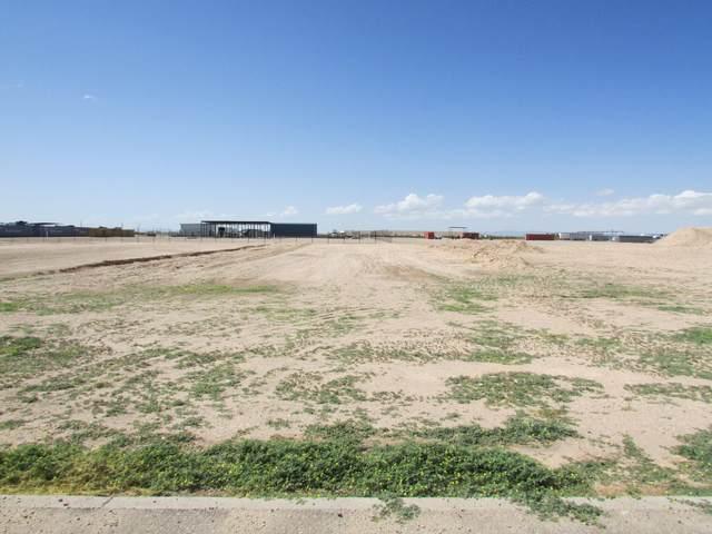 14620 Quarter Horse Street, Clint, TX 79836 (MLS #850614) :: The Purple House Real Estate Group