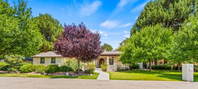 750 Via Mirada Lane, El Paso, TX 79922 (MLS #850990) :: The Purple House Real Estate Group