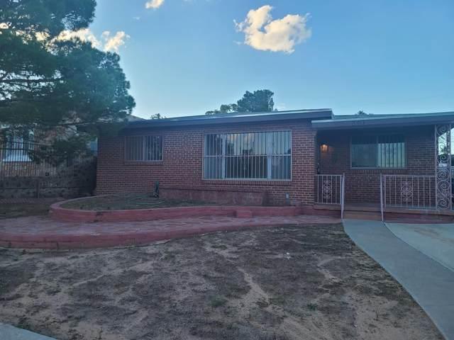 3013 Idalia Avenue, El Paso, TX 79930 (MLS #851004) :: Summus Realty