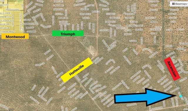 18 Ascencion, Horizon City, TX 79928 (MLS #851074) :: Summus Realty