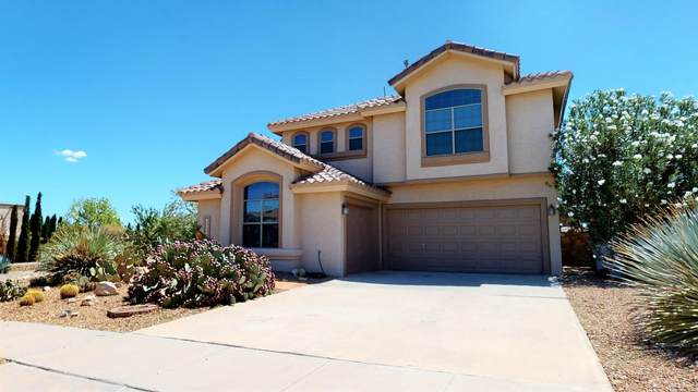 12442 Paseo Rojo Drive, El Paso, TX 79928 (MLS #851106) :: Preferred Closing Specialists