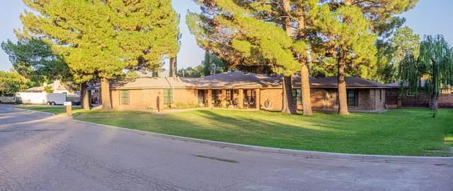 716 Live Oak Drive, El Paso, TX 79932 (MLS #851392) :: Jackie Stevens Real Estate Group